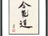 aikido_lg