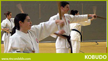 Kobudo-Karate, Artes Hermanas
