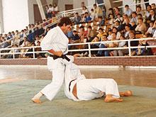 F.Fernandez1981-2