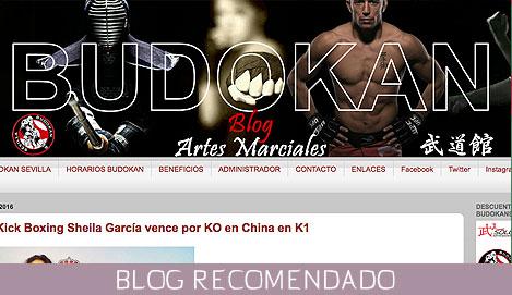 blog-karate-david