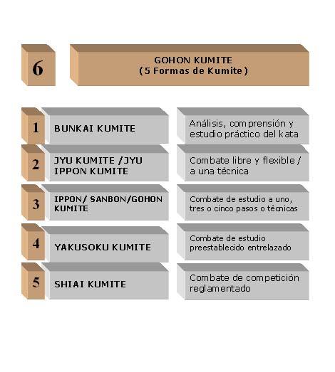 6 GOHON KUMITE