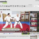 KarateHastaVerde
