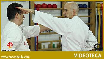 Renzoku waza y Kihon kumite (4)