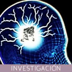 La práctica del karate y el desarrollo de capacidades cerebrales