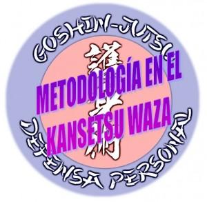 Metodologia-en-el-kansetsu-waza