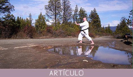 Teoría y aplicación del kata tradicional Un arte con mil caras . . .