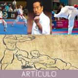 El karate postmoderno, tras la pérdida del TEGUMI