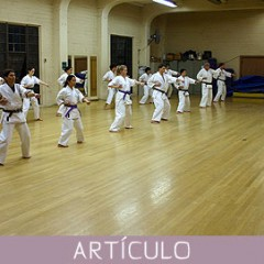 Profesor de karate: una labor difícil