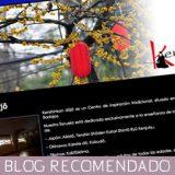Blog Kenshinkan Dojo
