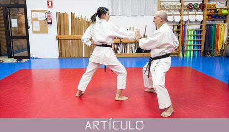 Yakusoku-Kumite (5)
