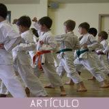 Organización pedagógica de las artes marciales