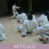 Procesos de capacitación profesional de los maestros de artes marciales en la actualidad internacional, y su relación con la actividad que realizan