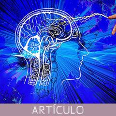 Plasticidad funcional y estructural del cerebro en karatekas