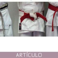 Los títulos profesionales en las artes marciales