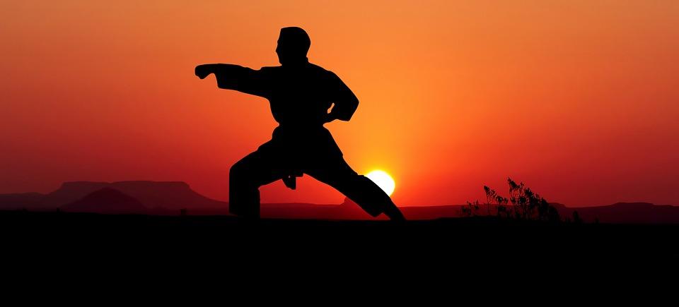 Resultado de imagen para artes marciales varias