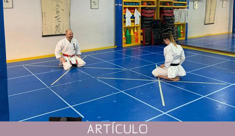 El virus ha golpeado fuerte al Karate pero venceremos