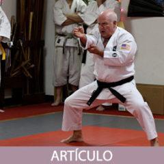 Precisando el contexto profesional de los maestros de artes marciales.
