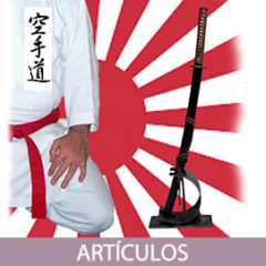 """Japonización"" del Karatedo en el mundo occidental"