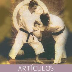 Los Katas de Karate-jutsu no son fijos o inamovibles…