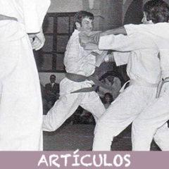 El karate y la forja de cuerpo y espíritu: El Kitae.