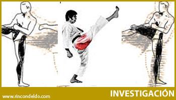 Implicación de los Glúteos en las Acciones Técnicas de Karate