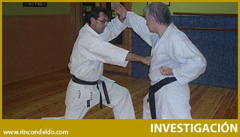 La Distancia y el Desplazamiento como Táctica en el Shiai Kumite