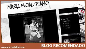 Blog Maria Boal Riaño