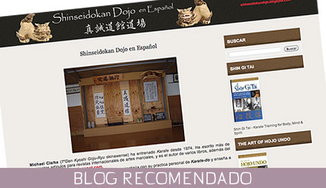 Blog Shinseidokan Dojo en Español