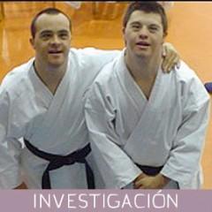 Aportaciones del entrenamiento de karate para mejora del desarrollo motor y perceptivo de las personas con capacidades diferentes