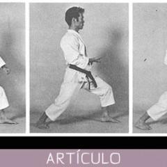 Dolor de rodilla en artes marciales: causas y remedios