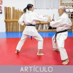 Yakusoku-Kumite (4)