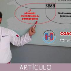Competencias metodológicas y pedagógicas en el perfil profesional del sensei de artes marciales.