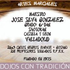 Artes Marciales Valladolid