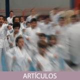 Importancia de la planificación del entrenamiento en las Artes Marciales