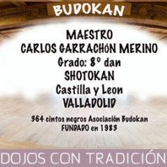CLUB DE KARATE BUDOKAN